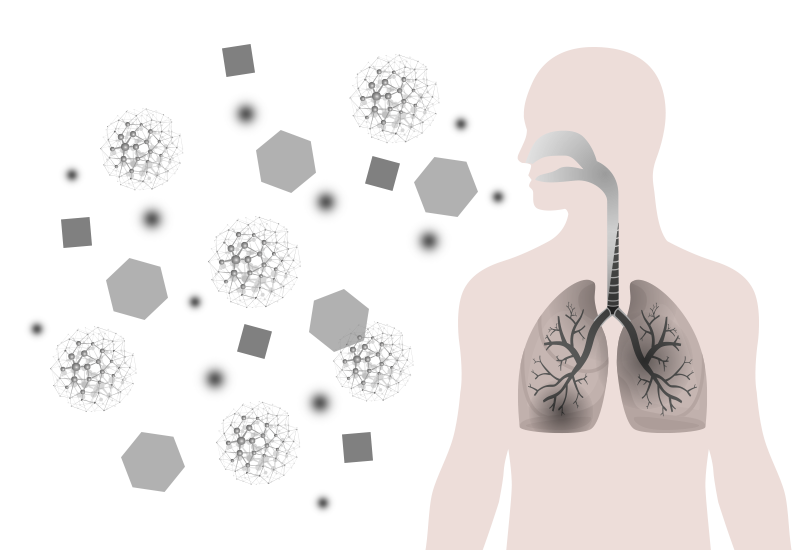 Dust particles entering the human body